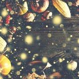 Fundo da ação de graças com neve de queda do ouro Abóboras e vários frutos do outono Quadro com os ingredientes sazonais em Thank Fotos de Stock