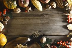 Fundo da acção de graças Abóboras e vários frutos do outono Quadro com os ingredientes sazonais no dia da ação de graças Quadro d Imagem de Stock
