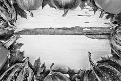 Fundo da acção de graças Abóboras em um fundo de madeira branco Espaço livre para o texto Vista de acima Imagem de Stock
