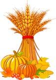 Fundo da acção de graças/colheita Imagens de Stock Royalty Free