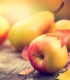 Fundo da acção de graças Folhas, maçãs e peras coloridas do outono foto de stock royalty free