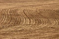 Fundo da agricultura - campo arado Fotografia de Stock Royalty Free