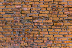 Fundo da alvenaria/parede de tijolo alaranjados Foto de Stock