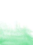 Fundo da aquarela da hortelã Imagem de Stock