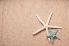 Fundo da areia com dois starfish Imagem de Stock