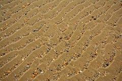 Fundo da areia ondulada com shell quebrados, ângulo diagonal foto de stock royalty free
