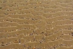 Fundo da areia ondulada com shell quebrados imagem de stock