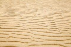 Fundo da areia da praia da ondinha imagem de stock royalty free