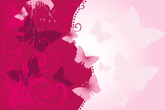 Fundo da borboleta Imagens de Stock Royalty Free