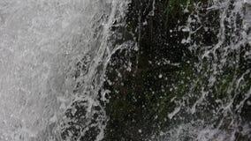 Fundo da cachoeira da mola vídeos de arquivo