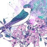 Fundo da cereja da mola com pássaros ilustração stock