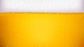Fundo da cerveja largo Foto de Stock