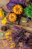 Fundo da colheita do outono da queda com a abóbora festiva decorativa da ação de graças Imagem de Stock