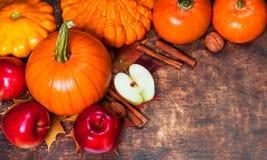 Fundo da colheita ou da ação de graças com abóboras, maçãs e fal Imagens de Stock