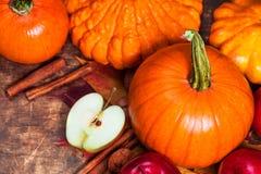 Fundo da colheita ou da ação de graças com abóboras, maçãs e fal Fotografia de Stock