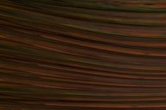 Fundo da cor baixa de marrom escuro da textura Imagem de Stock