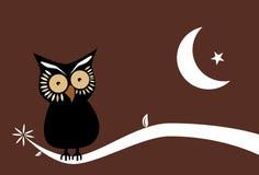 Fundo da coruja de noite Imagens de Stock