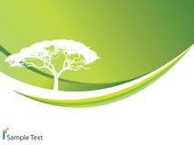 Fundo da ecologia Foto de Stock Royalty Free