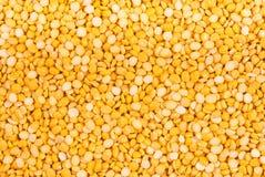Fundo da ervilha amarela secada imagens de stock royalty free