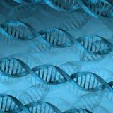 Fundo da estrutura da molécula do ADN Foto de Stock