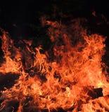 Fundo da flama Fotos de Stock
