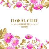 Fundo da flor com flores violetas Fotografia de Stock Royalty Free
