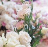 Fundo da flor do casamento Rosas brancas Imagens de Stock