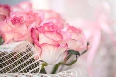 Fundo da flor do defocus do borrão Textura cor-de-rosa das rosas fotografia de stock