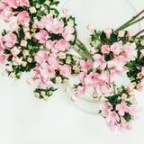 Fundo da flor do grupo de flores rosado Imagens de Stock