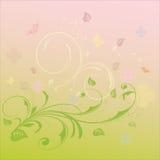 Fundo da flor do verão Imagem de Stock