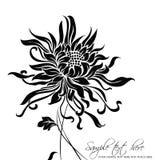 Fundo da flor do vetor Imagens de Stock Royalty Free
