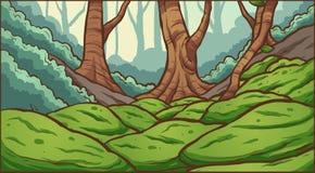 Fundo da floresta Fotografia de Stock Royalty Free