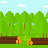 Fundo da floresta com as pilhas dos logs Fotografia de Stock