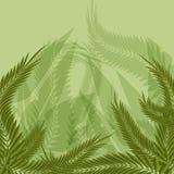 Fundo da floresta da selva ilustração royalty free