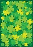 Fundo da folha do dia quatro do St. Patrick Fotos de Stock Royalty Free