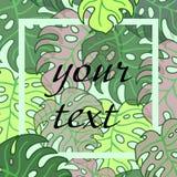 Fundo da folha tropical com quadro para o texto Fotos de Stock Royalty Free