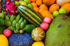 Fundo da fruta tropical Foto exótica crua e madura do close up do fruto papel de parede do vegetariano fotografia de stock