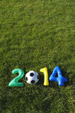 Fundo 2014 da grama da mensagem do futebol do amarelo do verde azul Fotografia de Stock