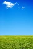 Fundo da grama e do céu Fotografia de Stock Royalty Free
