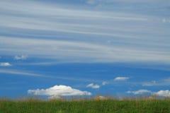 Fundo da grama e do céu Foto de Stock