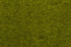 Fundo da grama verde de vista superior fotografia de stock royalty free