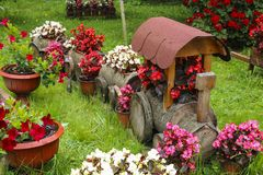 Fundo da jardinagem de flor da paisagem Trem e vagão de madeira BO fotos de stock