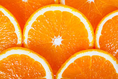 Fundo da laranja suculento Imagem de Stock Royalty Free