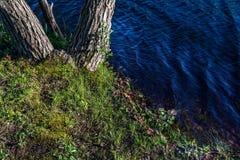 Fundo da linha costeira Foto de Stock Royalty Free