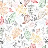 Fundo da luz do teste padrão das folhas de outono Fotos de Stock Royalty Free
