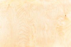 Fundo da madeira compensada do vidoeiro Fotografia de Stock