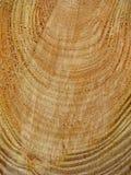 Fundo da madeira cortada Foto de Stock