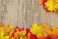 Fundo da madeira de Autumn Leaves e do tempo Imagem de Stock Royalty Free