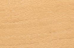 Fundo da madeira de faia Imagens de Stock Royalty Free