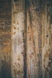 Fundo da madeira do vintage Textura e fundo de madeira ásperos para desenhistas Feche acima da ideia da textura de madeira abstra Fotos de Stock